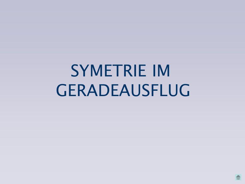 SYMETRIE IM GERADEAUSFLUG