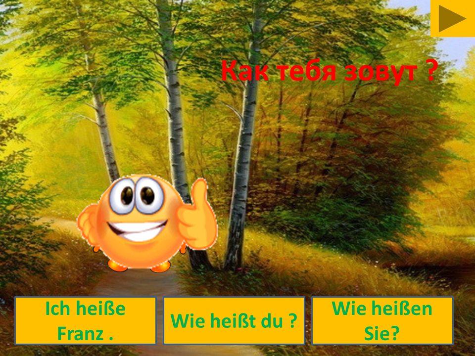 Как тебя зовут Ich heiße Franz . Wie heißt du Wie heißen Sie