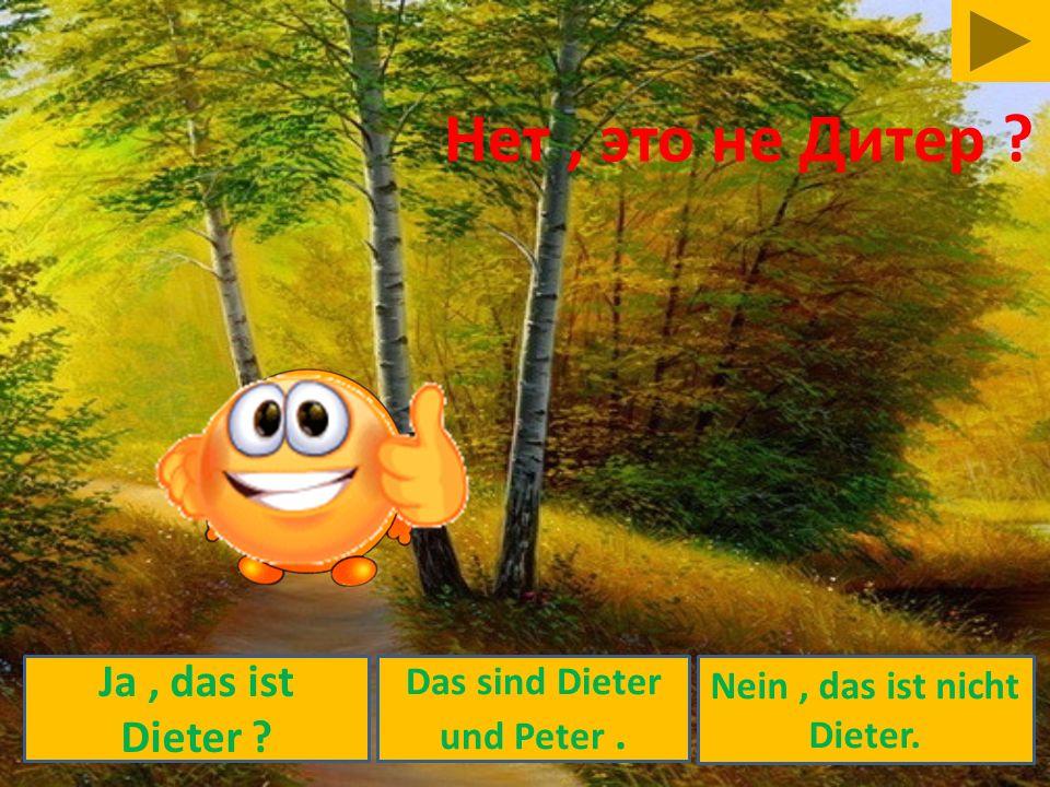 Das sind Dieter und Peter . Nein , das ist nicht Dieter.