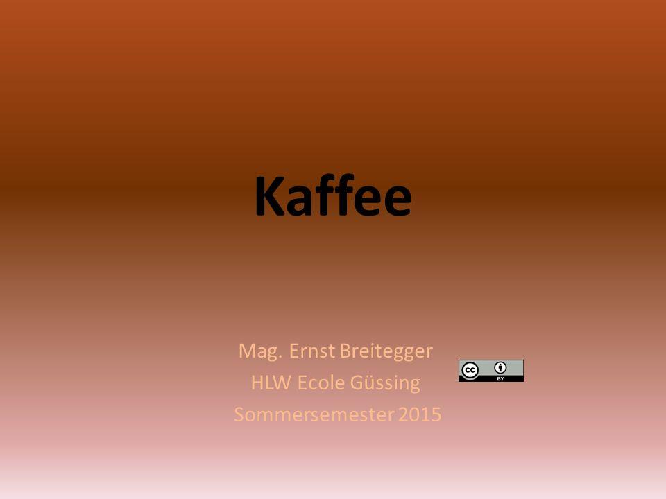 Mag. Ernst Breitegger HLW Ecole Güssing Sommersemester 2015
