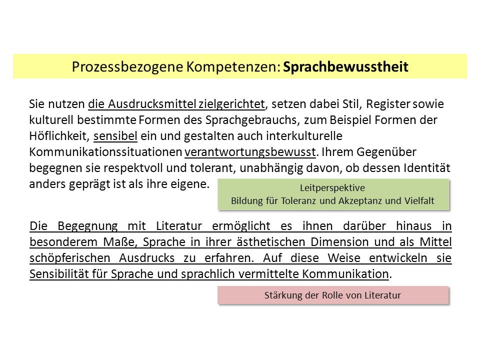 Prozessbezogene Kompetenzen: Sprachbewusstheit