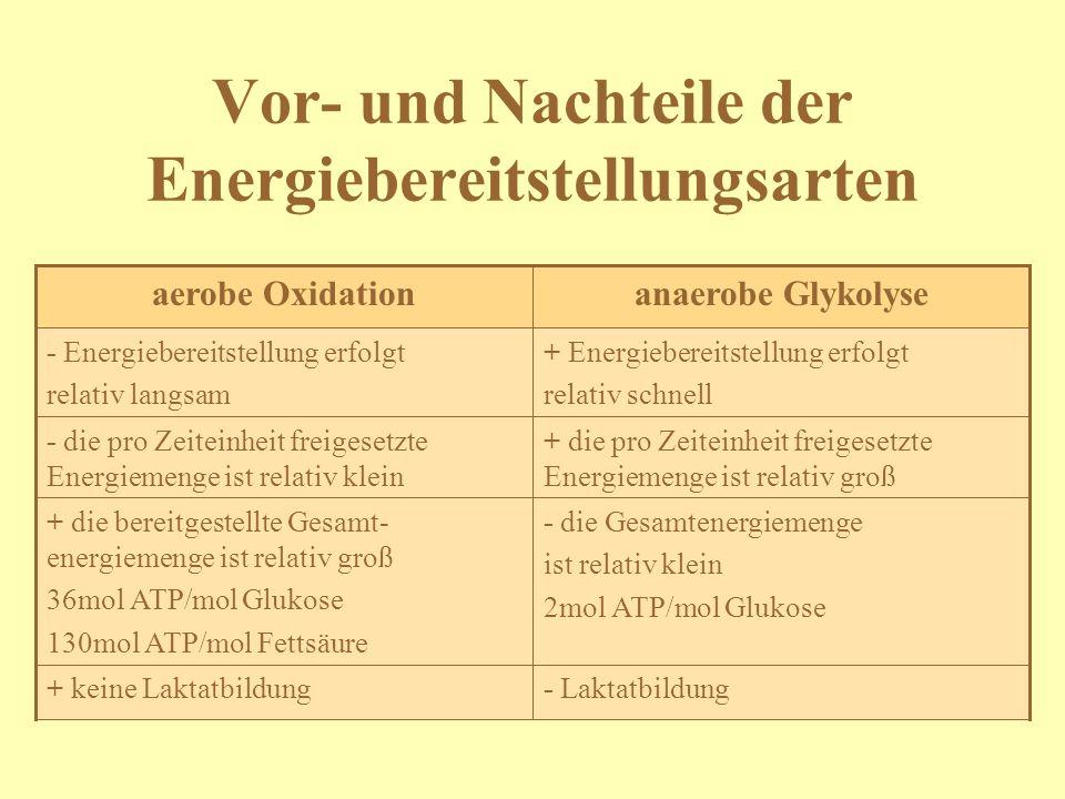 Vor- und Nachteile der Energiebereitstellungsarten