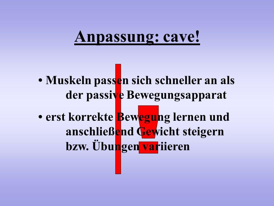 Anpassung: cave! • Muskeln passen sich schneller an als der passive Bewegungsapparat.