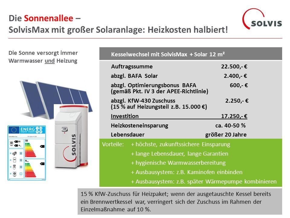 Die Sonnenallee – SolvisMax mit großer Solaranlage: Heizkosten halbiert!