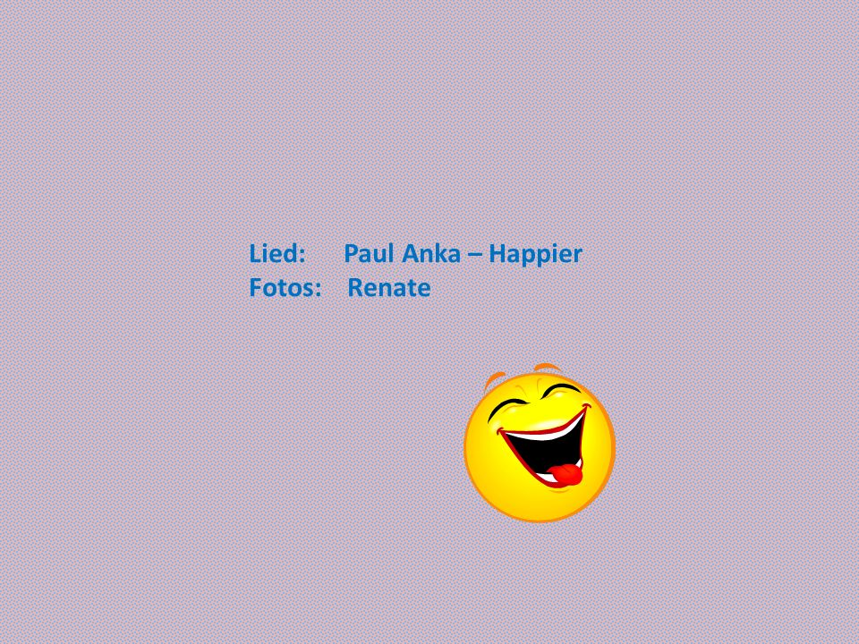 Lied: Paul Anka – Happier