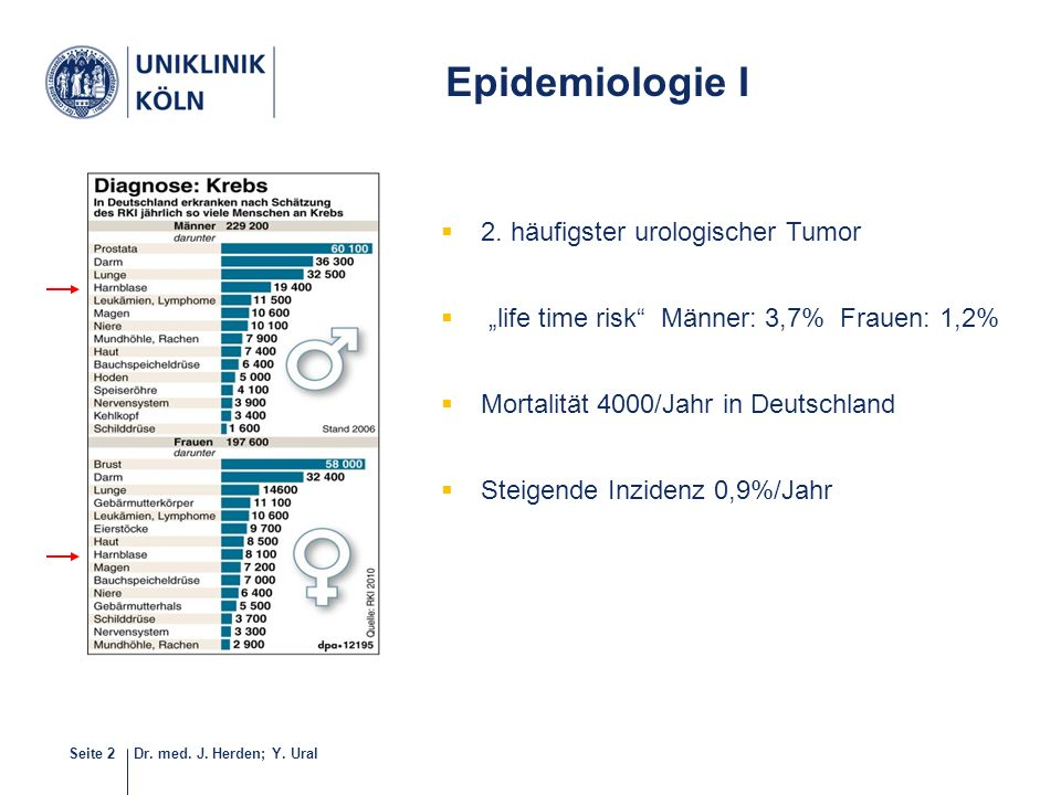 Epidemiologie I 2. häufigster urologischer Tumor