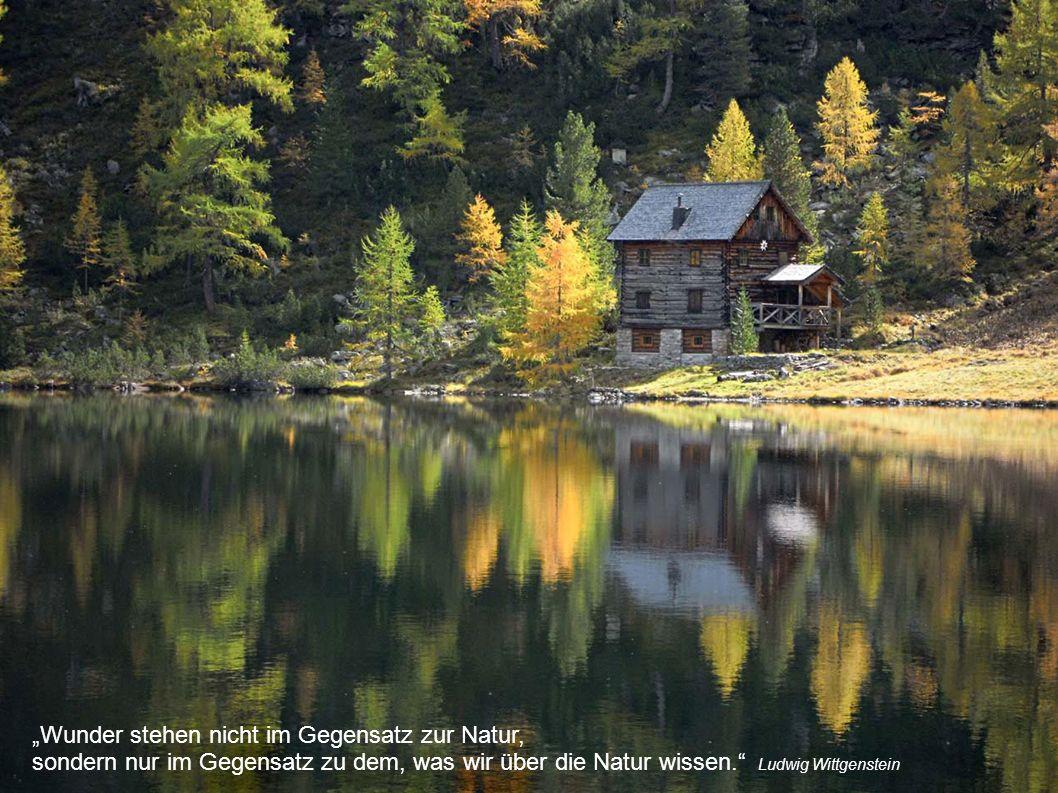 """""""Wunder stehen nicht im Gegensatz zur Natur, sondern nur im Gegensatz zu dem, was wir über die Natur wissen. Ludwig Wittgenstein"""
