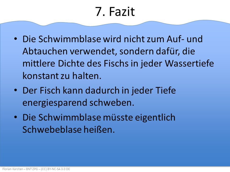 7. Fazit