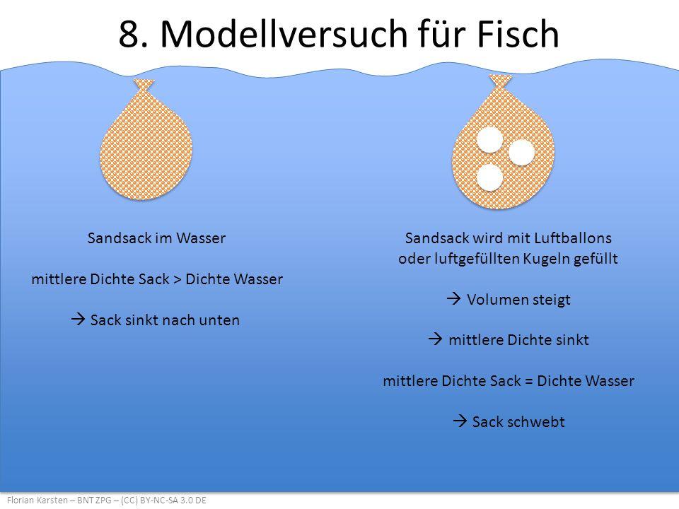 8. Modellversuch für Fisch