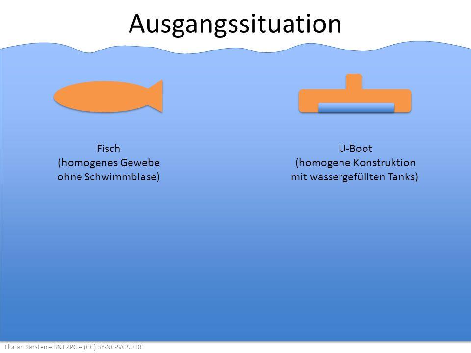 Ausgangssituation Fisch (homogenes Gewebe ohne Schwimmblase)