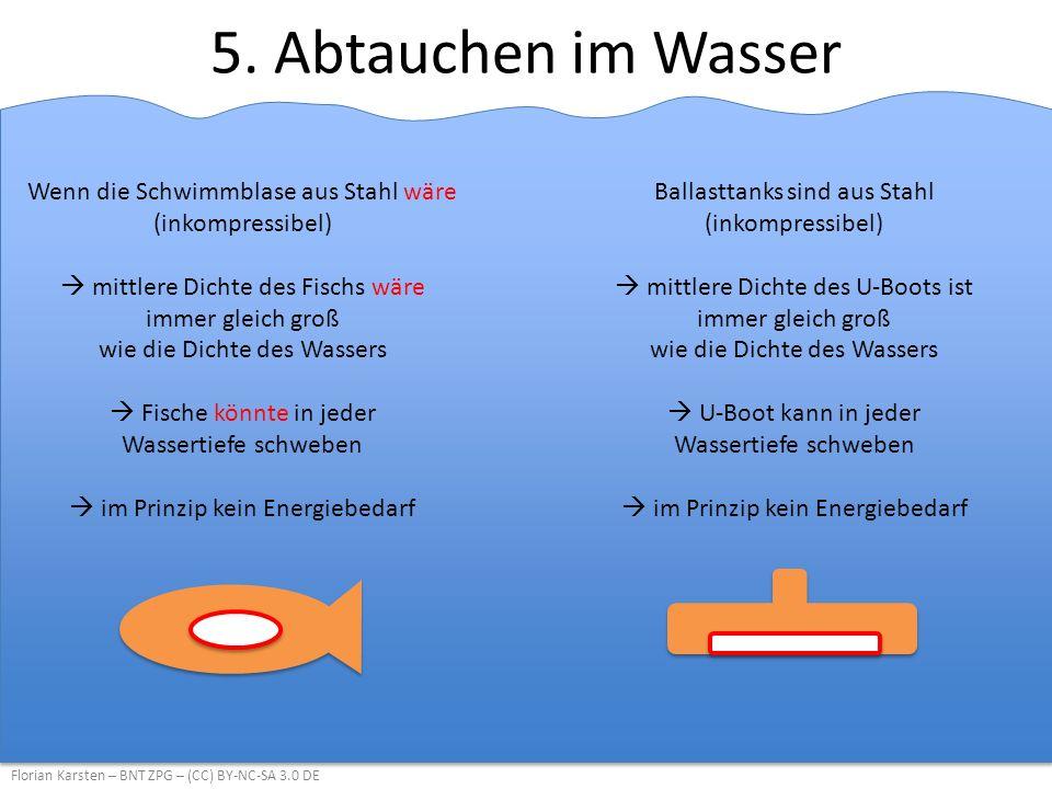 5. Abtauchen im Wasser Wenn die Schwimmblase aus Stahl wäre (inkompressibel)