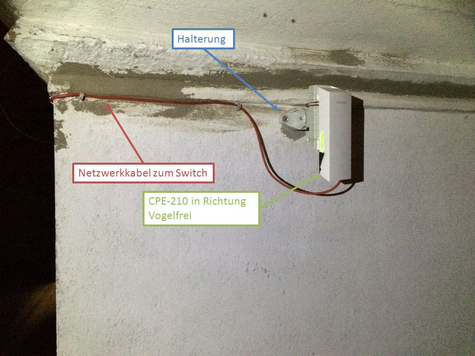 Halterung Netzwerkkabel zum Switch CPE-210 in Richtung Vogelfrei