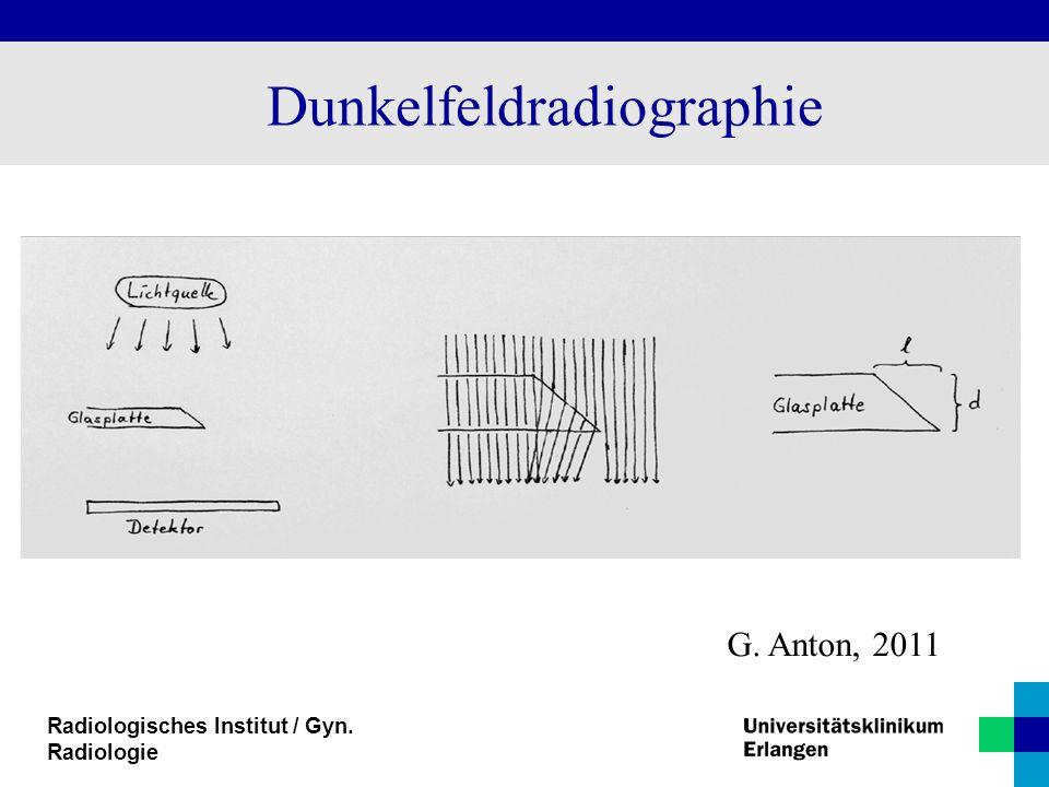 Dunkelfeldradiographie