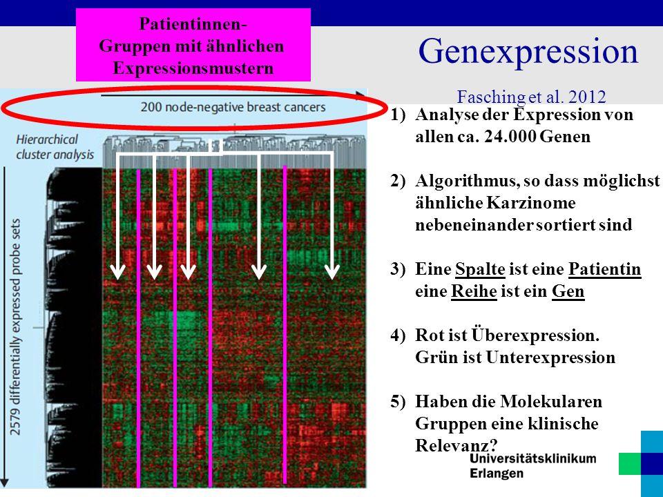 Genexpression Patientinnen- Gruppen mit ähnlichen Expressionsmustern
