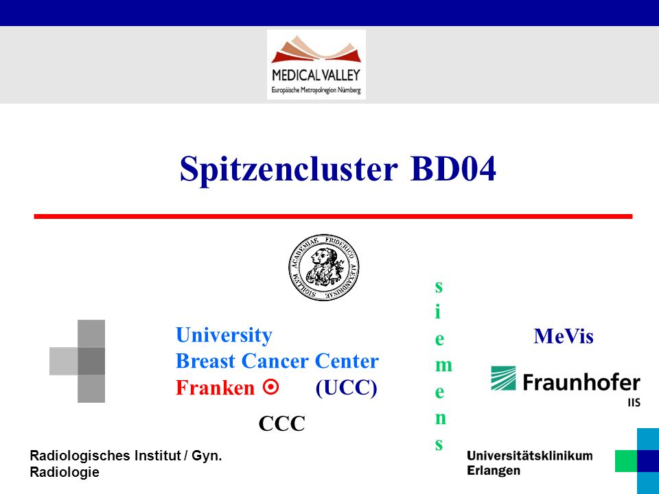 Spitzencluster BD04 siemens University Breast Cancer Center MeVis
