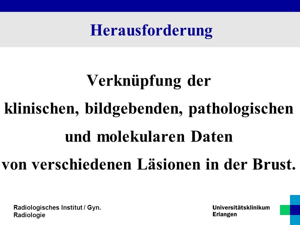 Herausforderung Verknüpfung der klinischen, bildgebenden, pathologischen und molekularen Daten von verschiedenen Läsionen in der Brust.
