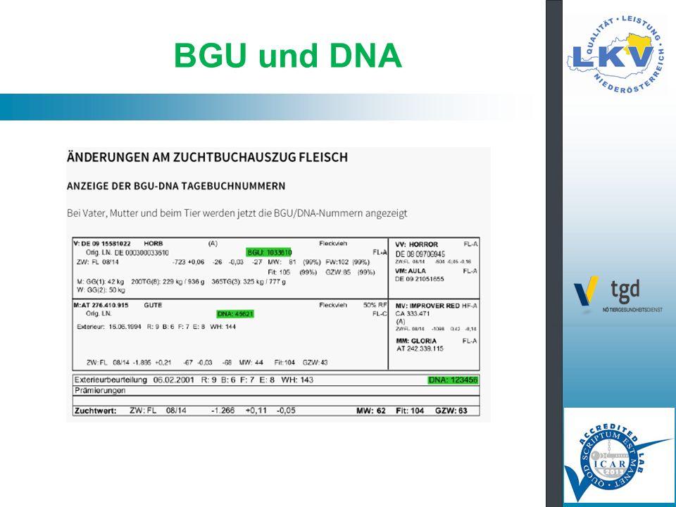 BGU und DNA