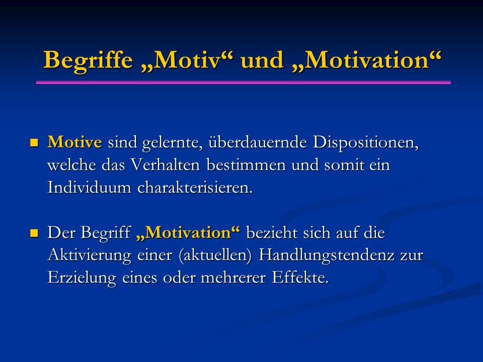 """Begriffe """"Motiv und """"Motivation"""