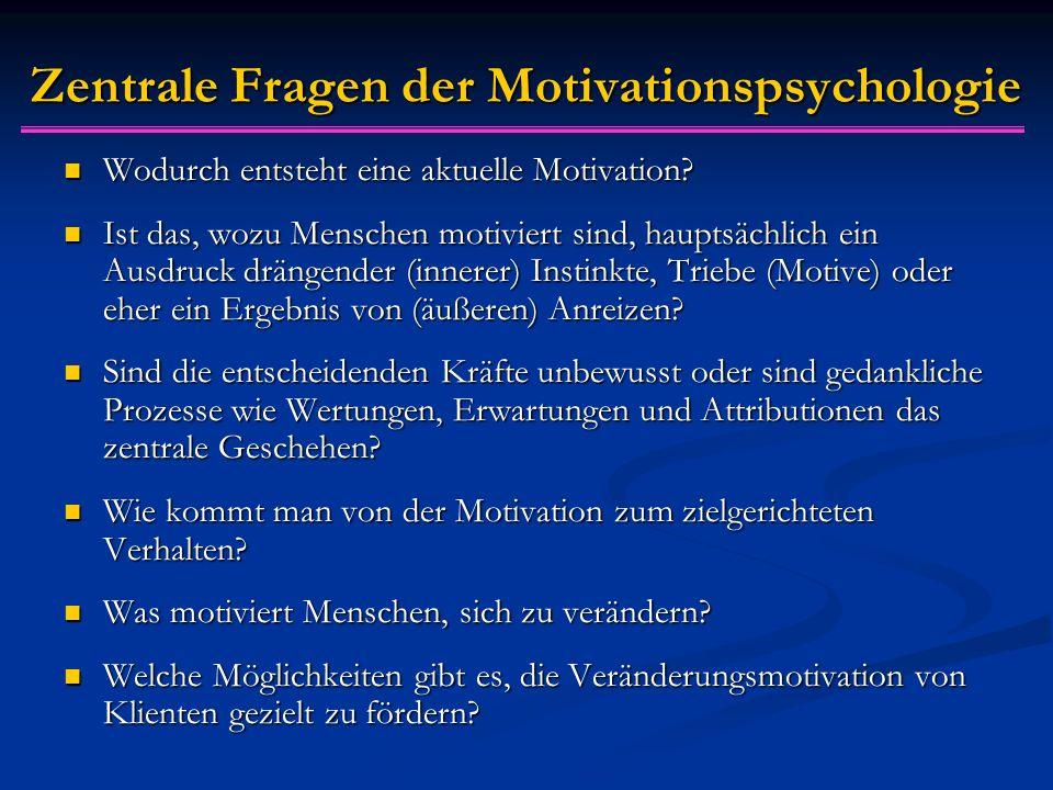 Zentrale Fragen der Motivationspsychologie