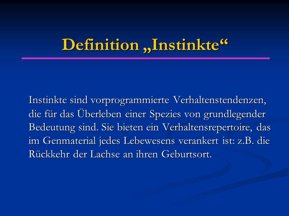 """Definition """"Instinkte"""