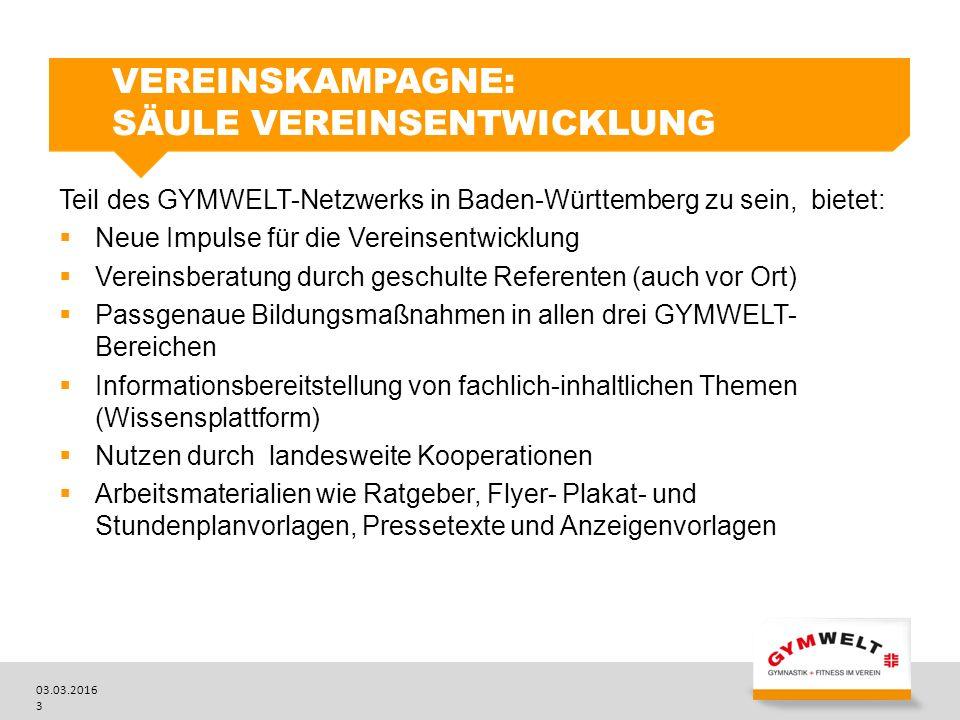 Vereinskampagne: Säule Vereinsentwicklung