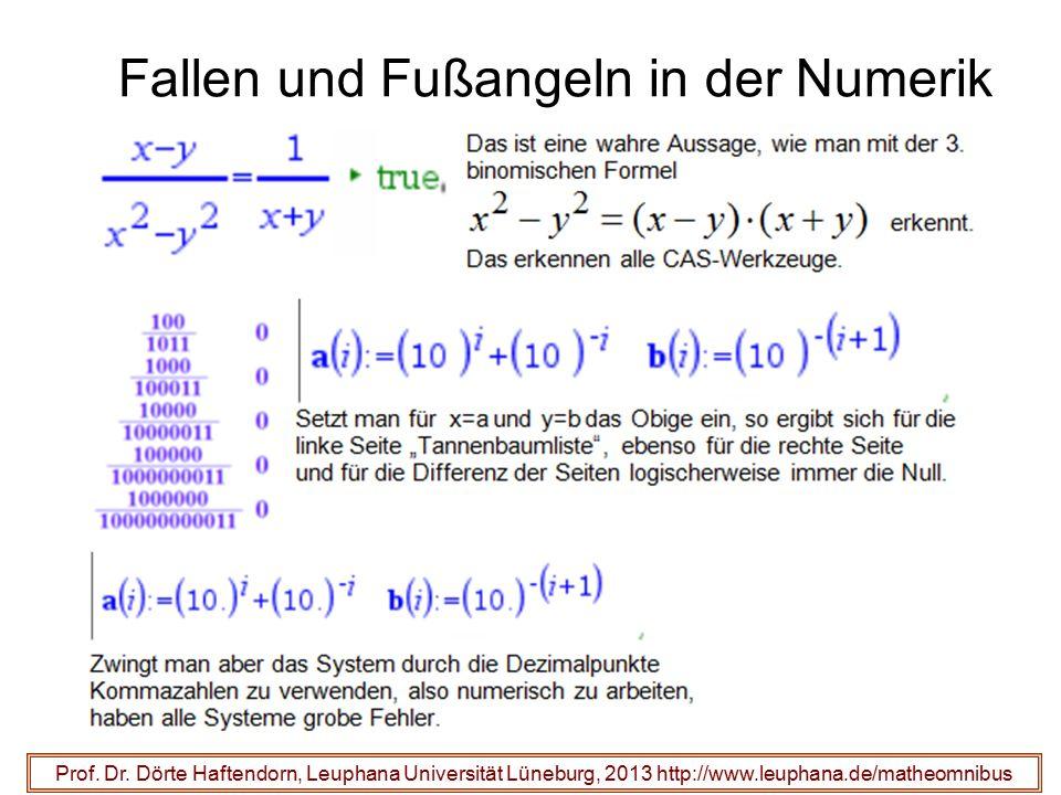 Fallen und Fußangeln in der Numerik
