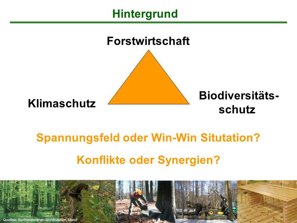 Hintergrund Forstwirtschaft. Biodiversitäts- schutz. Klimaschutz. Spannungsfeld oder Win-Win Situtation