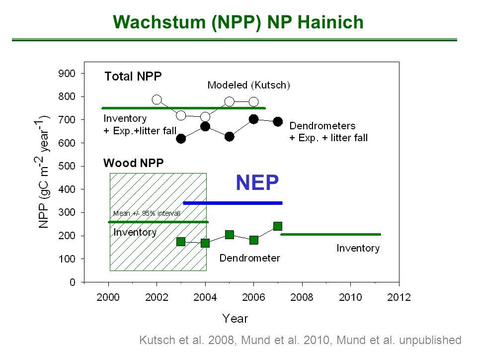 Wachstum (NPP) NP Hainich