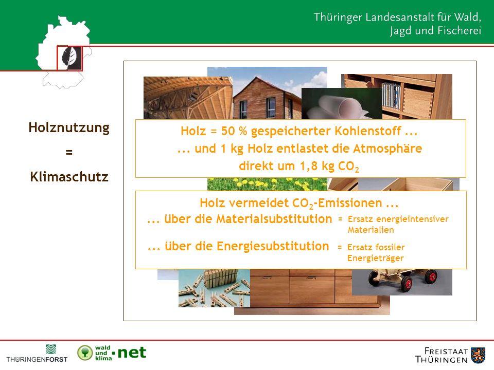 Holznutzung = Klimaschutz