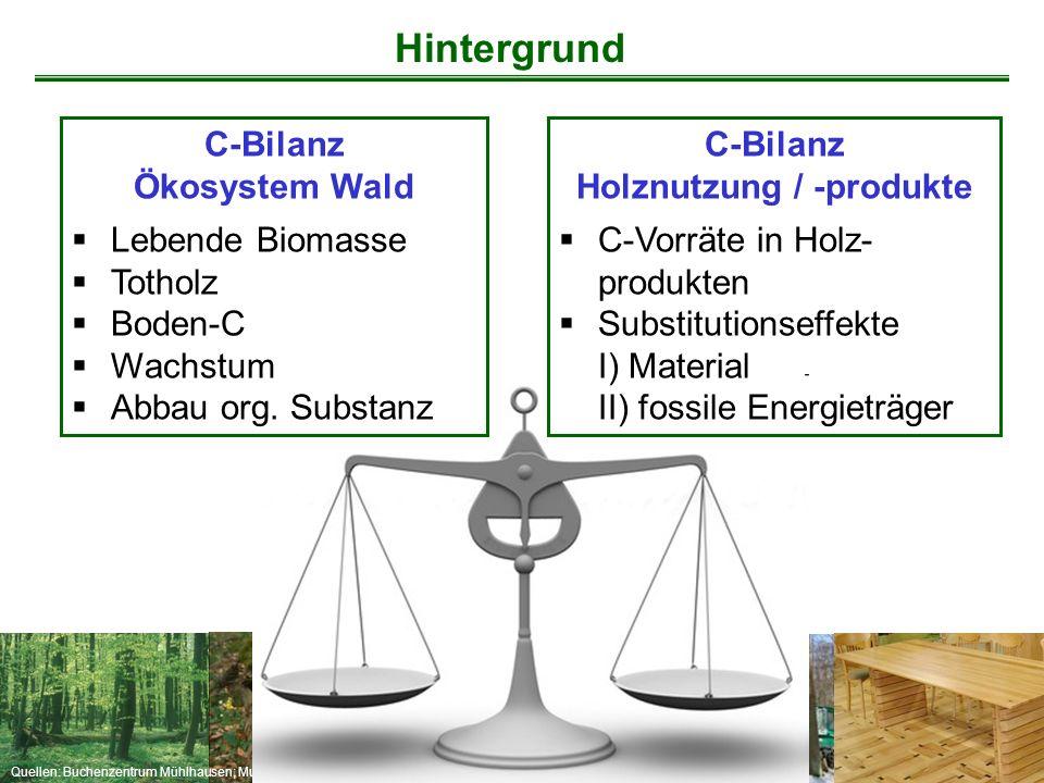 Holznutzung / -produkte