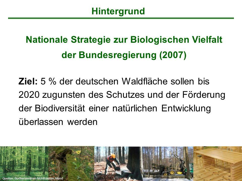 Hintergrund Nationale Strategie zur Biologischen Vielfalt der Bundesregierung (2007)