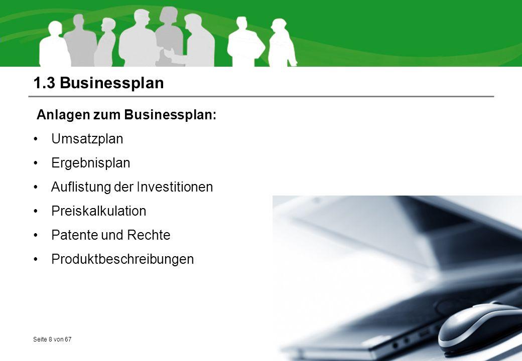 1.3 Businessplan Anlagen zum Businessplan: Umsatzplan Ergebnisplan