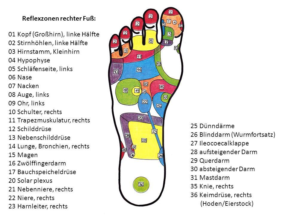 Reflexzonen rechter Fuß: