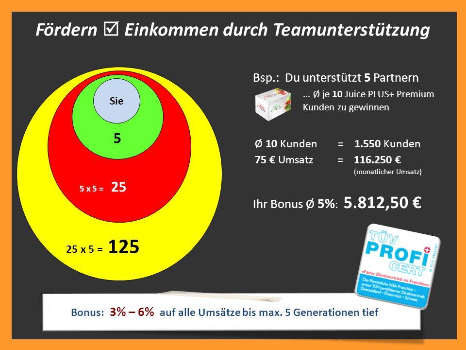 Fördern  Einkommen durch Teamunterstützung