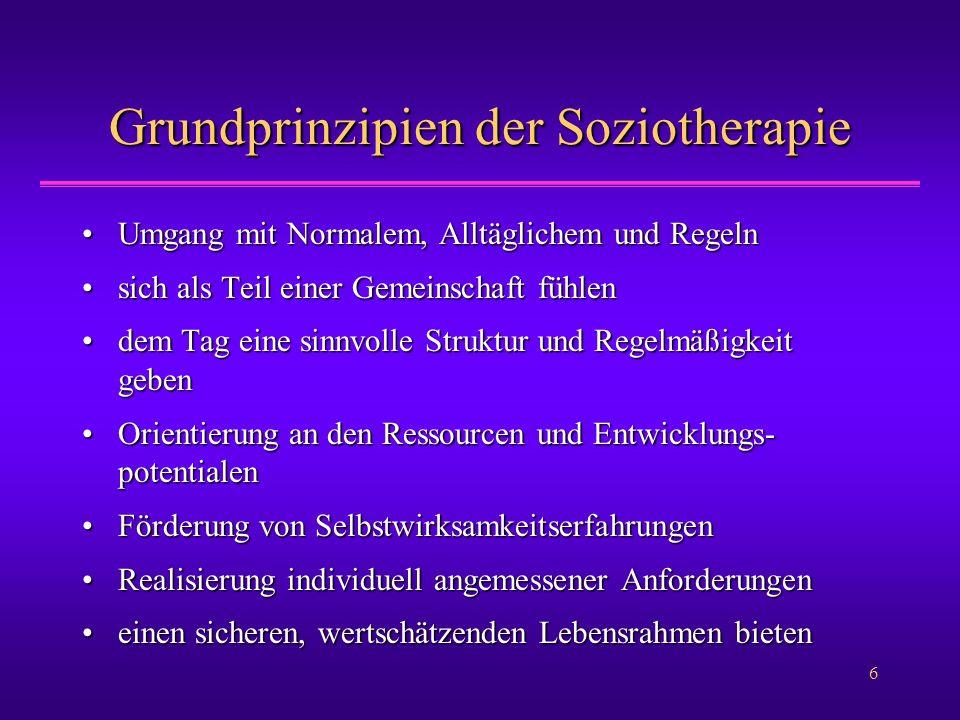 Grundprinzipien der Soziotherapie