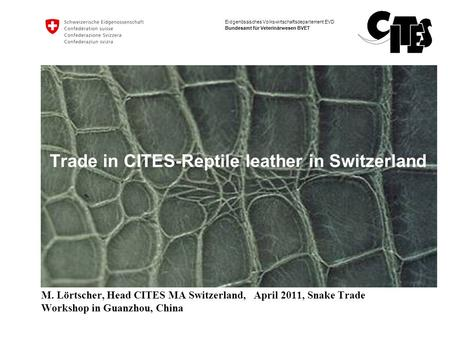 Trade in CITES-Reptile leather in Switzerland
