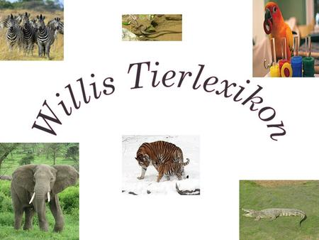 Willis Tierlexikon.