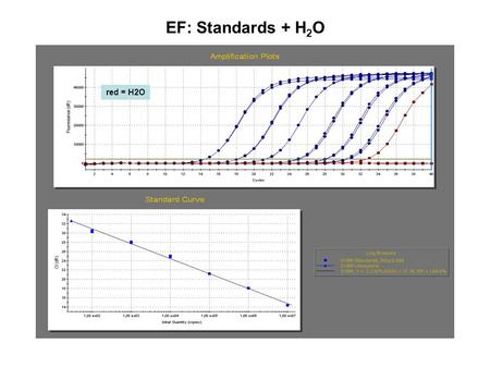 EF: Standards + H2O red = H2O.