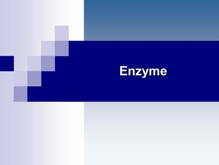 Enzyme.