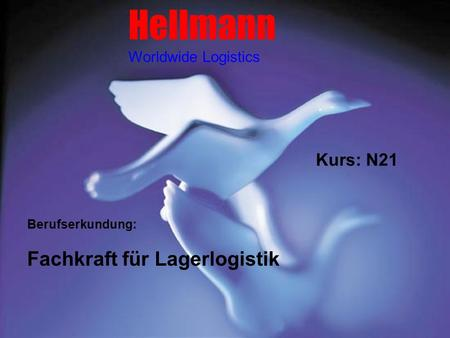 Hellmann Fachkraft für Lagerlogistik Kurs: N21 Worldwide Logistics