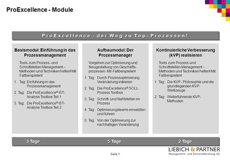 ProExcellence - Module