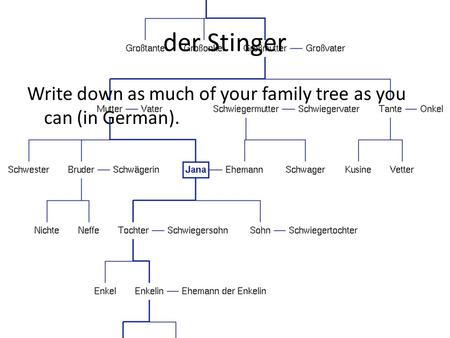 Der Stinger Write down as much of your family tree as you can (in German).
