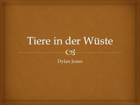 Tiere in der Wüste Dylan Jones.