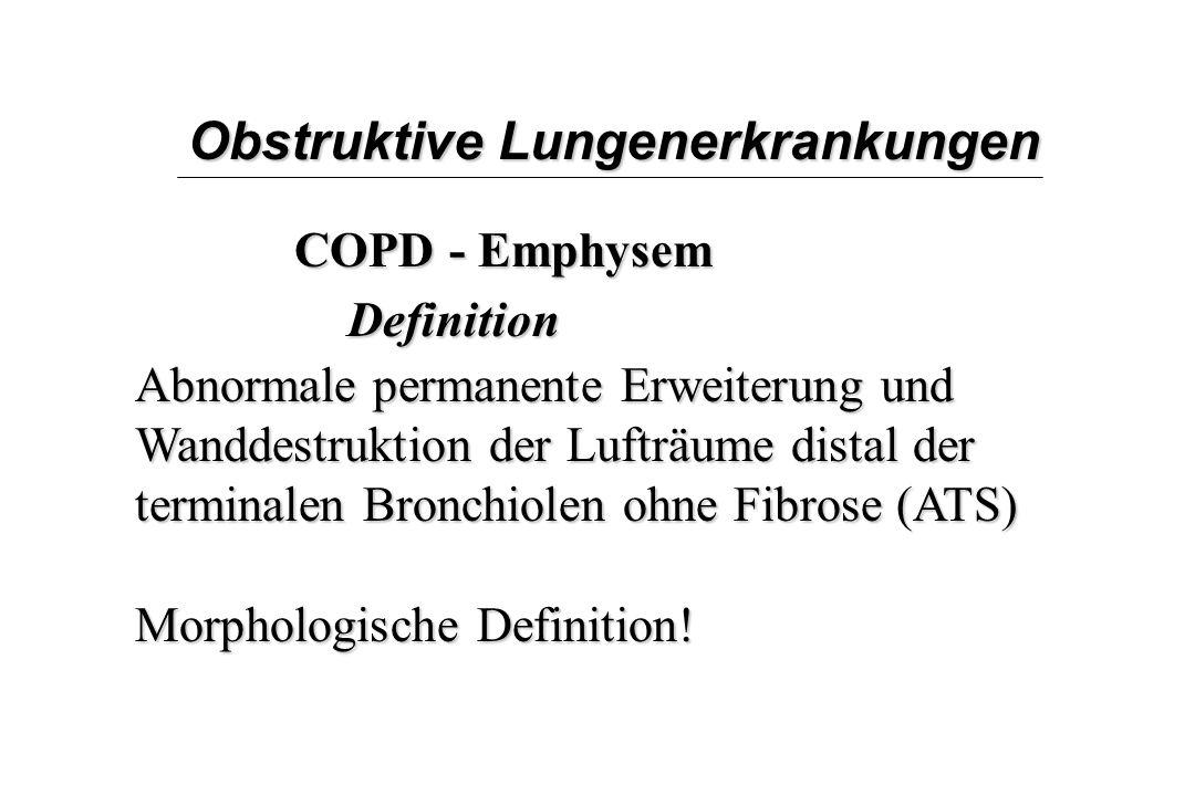 Klinisches Institut für Pathologie, AKH Wien - ppt herunterladen