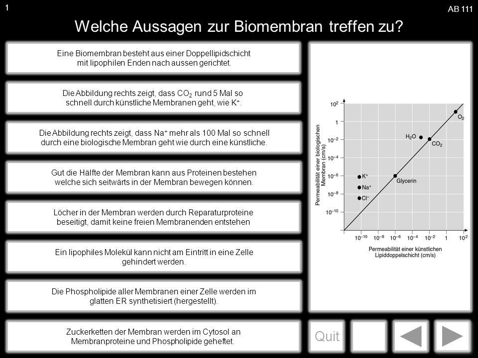 Welche Aussagen zur Biomembran treffen zu? - ppt herunterladen