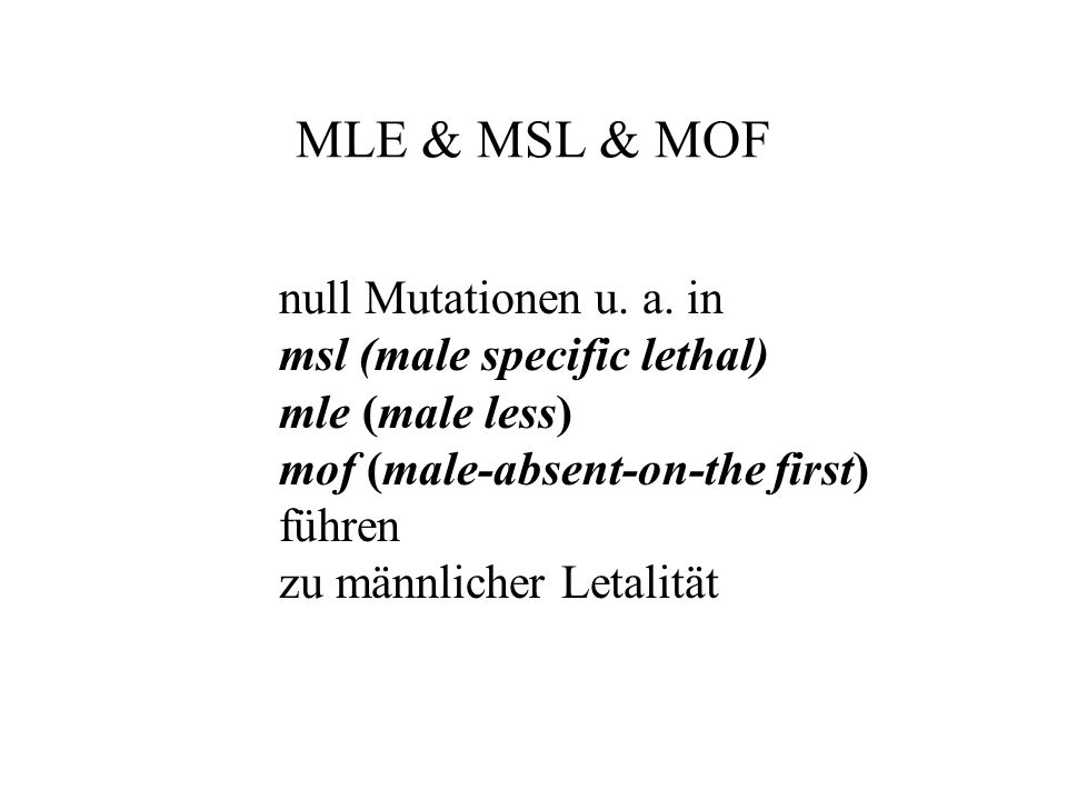 MLE & MSL & MOF null Mutationen u. a. in msl (male specific lethal)