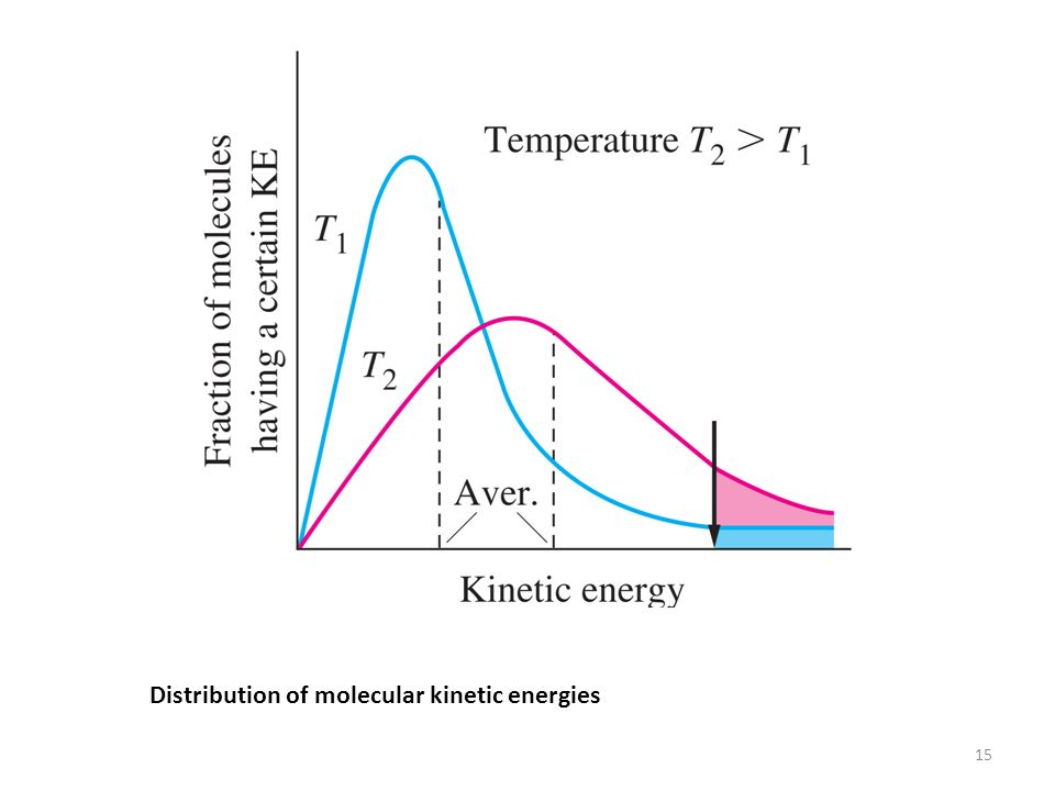 Distribution of molecular kinetic energies