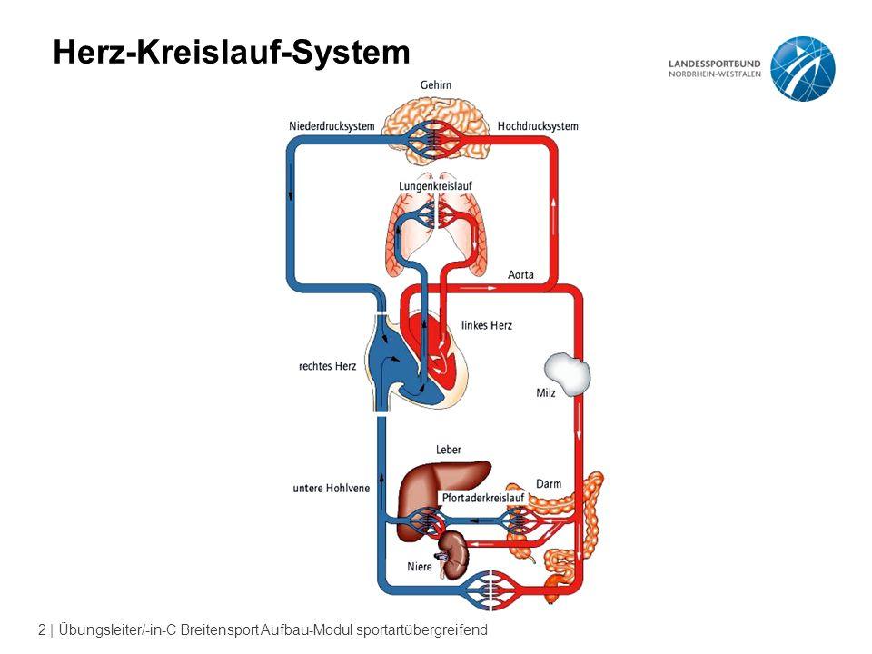 Das Herz-Kreislauf-System - ppt video online herunterladen