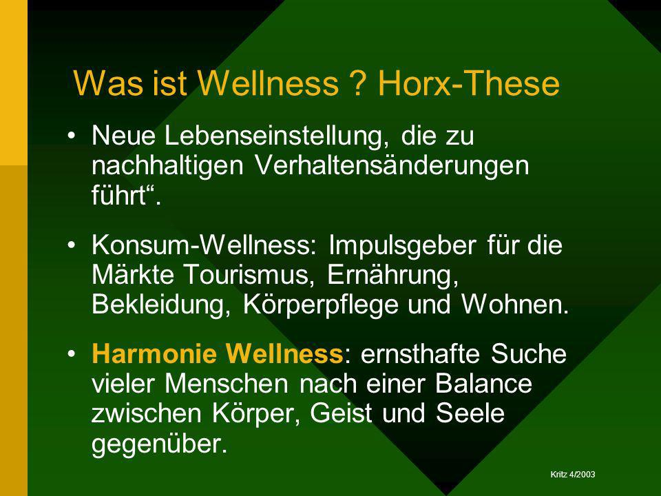 Was ist Wellness Horx-These
