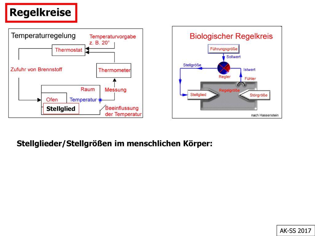Atemberaubend Regelkreis Heizkreisdiagramm Zeitgenössisch ...